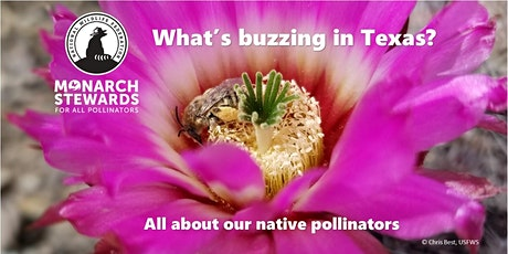 December Webinar: Interactive Pollinator Richness Tools tickets