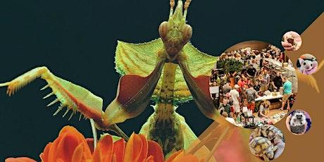 Show Me Reptile & Exotics Show (Springfield, MO) tickets