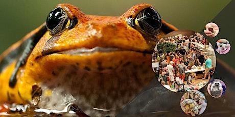 Show Me Reptile & Exotics Show (Paducah) tickets