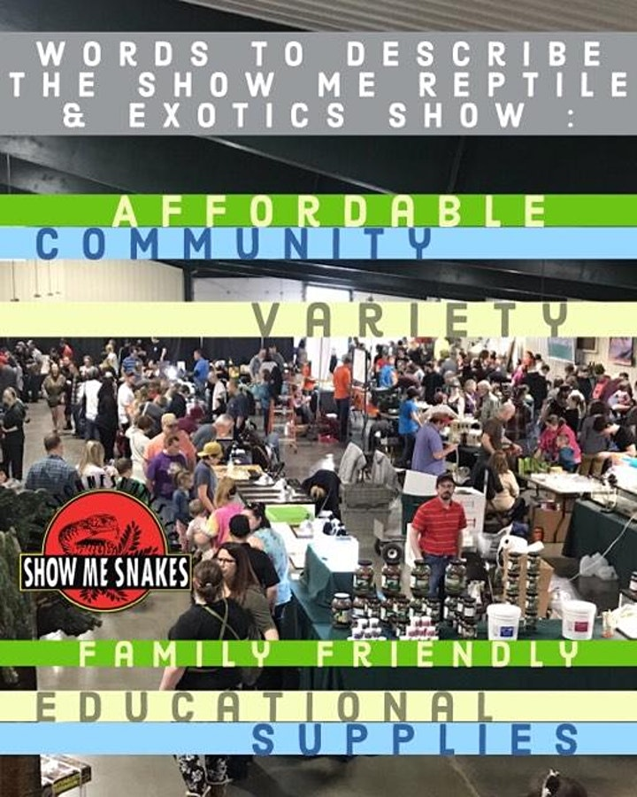 Show Me Reptile & Exotics Show (Kansas City, MO) image