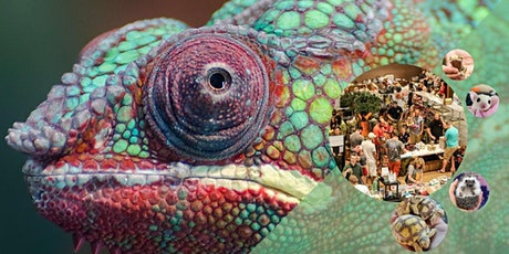 show me reptile and exotics show tulsa tickets