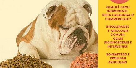 Alimentazione del cane biglietti