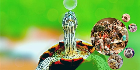 Show Me Reptile & Exotics Show (Janesville) tickets