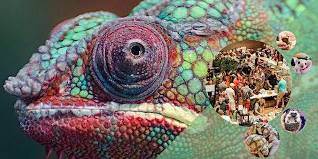 show me reptile & exotics show Tulsa tickets