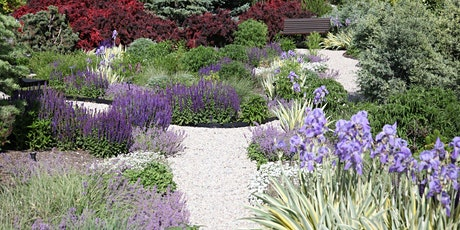 Best Perennials and Grasses for Utah tickets
