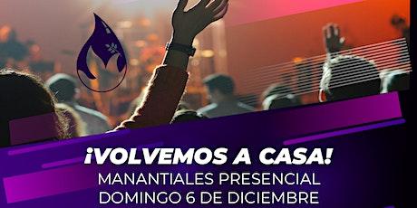 DOMINGO 6 DE DICIEMBRE | 10:00AM entradas