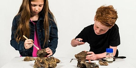 Scientist for a Day: Palaeontologist tickets