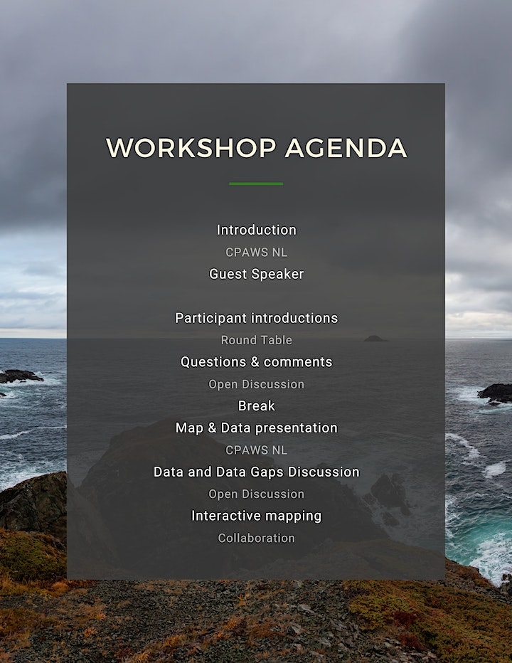 SMA Interactive Workshop Series - Salmon Workshop (November 25, 2020) image