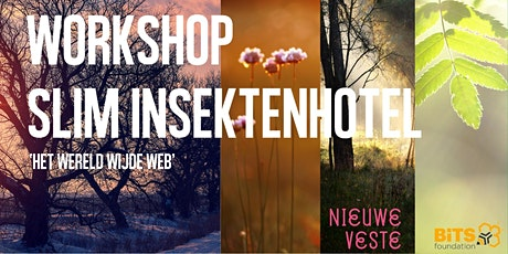 Workshop Internet of Things  - bouw een slim insectenhotel tickets