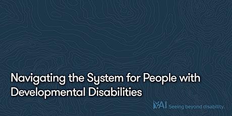 Navegando el Sistema para Personas con Discapacidades del Desarrollo entradas