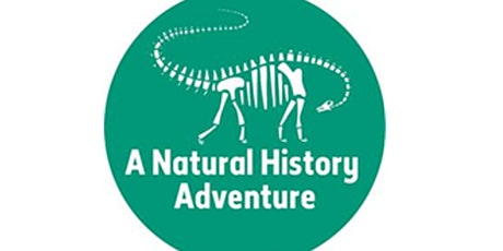 Creative Engagement with Dinosaurs and Nature tickets
