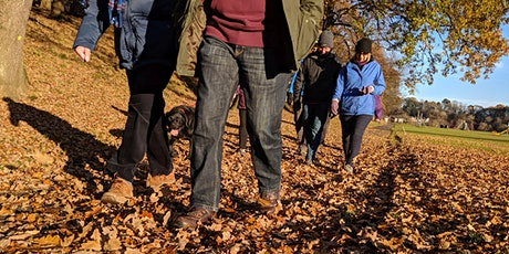 Monday Morning Low Impact Walk - Howard Park Kilmarnock tickets