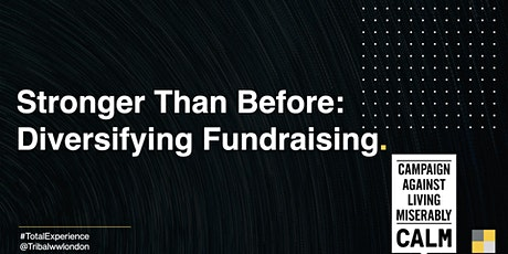 Stronger Than Before: Diversifying Fundraising tickets
