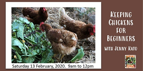Keeping Chickens for Beginners with Jenny Kato tickets
