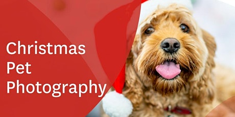 Stockland Harrisdale Christmas Pet Photography tickets