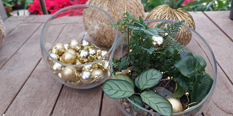 Terrarium Workshop - Christmas Gifting tickets