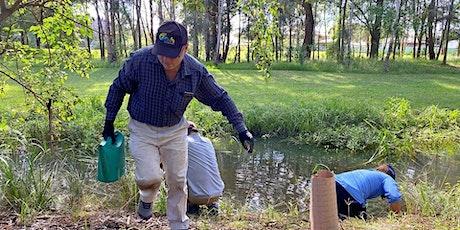 Penrith – School House Creek Fish Habitat Restoration Day 3 tickets