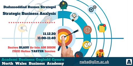 Strategic Business Analysis Taster tickets