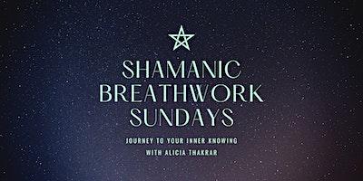 SHAMANIC+BREATHWORK+MEDITATION+%26+REIKI+--+VIR