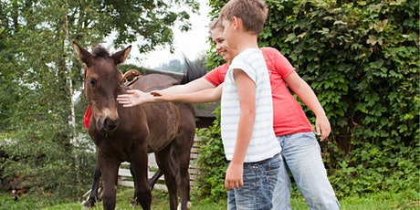 Getting social with  a pony! tickets