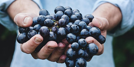 Wine Tasting: 8 Cool Climate Grapes Part 2 of 2 tickets