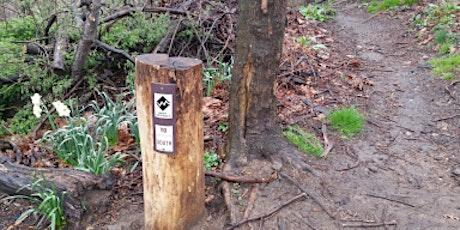 Trail Marker installation @ Highbridge Bike Park