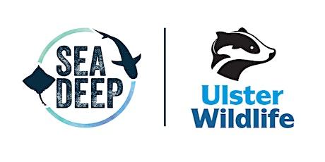 Sea Deep: Shark Tagging  Training - QUB students tickets
