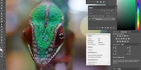 """Online Workshop """"Photoshop für Fotografen"""" Tickets"""