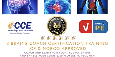 3 Brains Coach Certification ICF CCEU Accredited Become the difference tickets