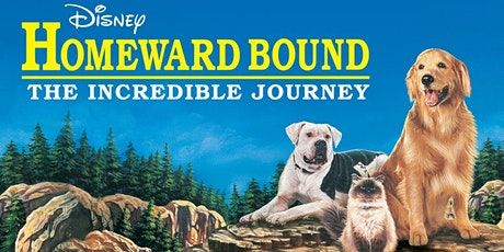 Homeward Bound: The Incredible Journey - Movies In Your Car  - $29 Per Car tickets