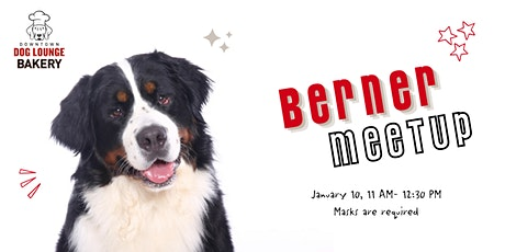Berner  Meetup tickets