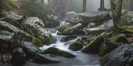 Wonderful Waterfalls Sponsored by Sigma & Samy's Camera- Live Online tickets