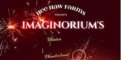 Imaginorium 's Winter Wonderland - Christmas Market Place Village entradas
