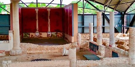 Alcalá romana. Visita guiada al yacimiento arqueológico de Complutum y la C entradas