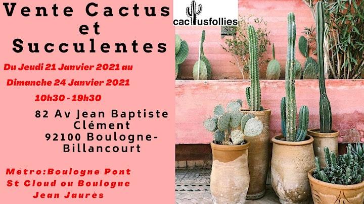 Image pour VENTE CACTUS ET SUCCULENTES Boulogne-Billancourt