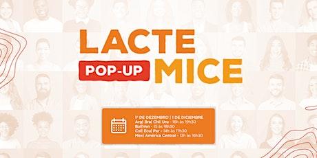 LACTE POP-UP MICE ingressos