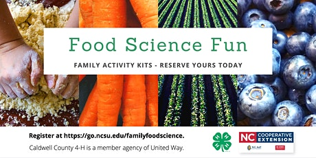 Food Science Fun - Family Activity Kit tickets