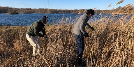 Invasive Plant Removal at Edith Read Wildlife Sanctuary tickets