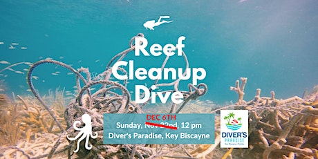 Reef Cleanup with Diver's Paradise tickets