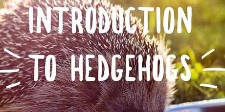 Introduction to Hedgehogs Online tickets