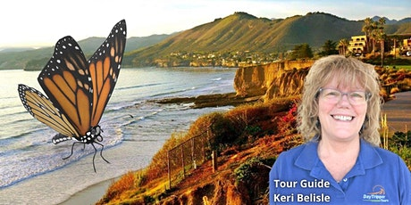 Explore the Scenery of Pismo Beach and the Monarch Butterfly Grove tickets