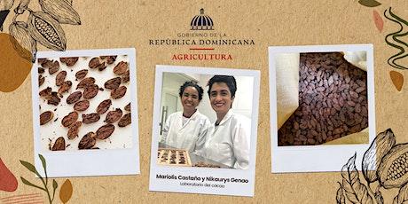 Aprende a diferenciar un grano de cacao defectuoso de un grano de calidad entradas