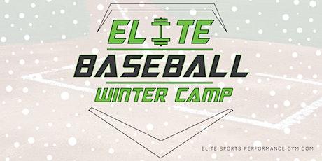 Elite Baseball ⚾ Winter 3-Day Camp tickets