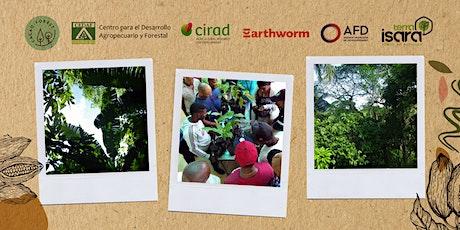 Cacao agroforestal en Rep. Dominicana: biodiversidad y producción boletos