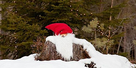 Daytime Christmas Trail and Meet Santa on his Sleigh tickets