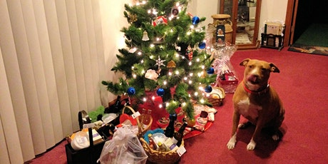 Christmas Treats for Your Dog tickets