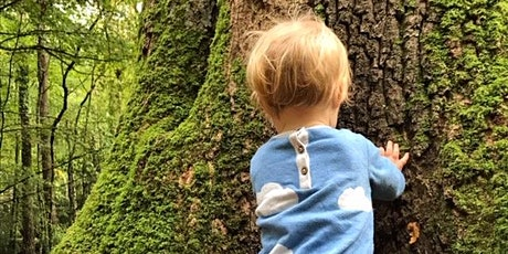 Babies in the Woods - nature connection session tickets