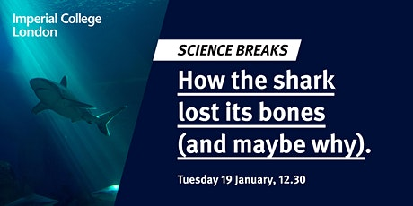 Science Breaks: How the shark lost its bones (and maybe why) tickets