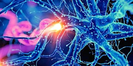 Neurobics Class: Increase Brain Fitness & Improve Memory tickets