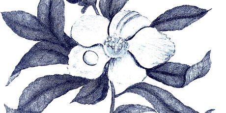 Sunday Botanical Drawing Class tickets
